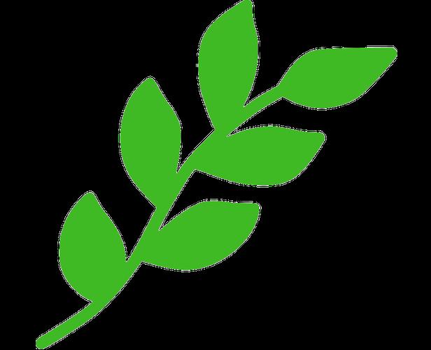 Ympäristö ja vastuullisuus
